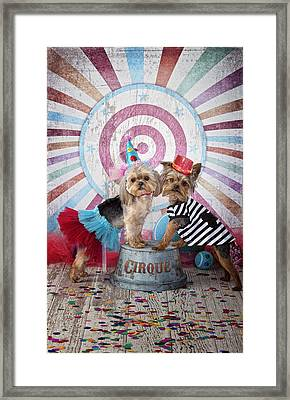 Cirque Act Framed Print by Lisa Jane