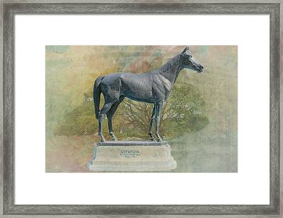 Citation Thoroughbred Framed Print