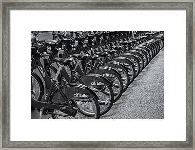 Citi Bikes Bw Framed Print by Susan Candelario