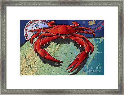 Citizen Crab Of Virginia Framed Print