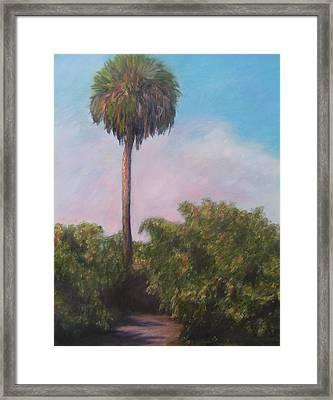 Citra Fl Orange Grove Framed Print