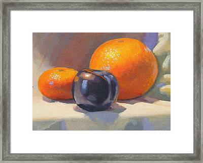 Citrus And Plum Framed Print by Peter Orrock