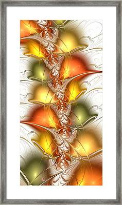 Citrus Colors Framed Print by Anastasiya Malakhova