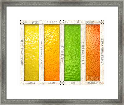 Citrus Framed Print by Cristophers Dream Artistry