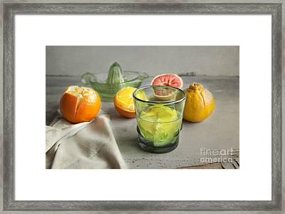 Citrus Fresh Framed Print by Elena Nosyreva