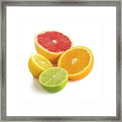 Citrus Fruit Halves Framed Print