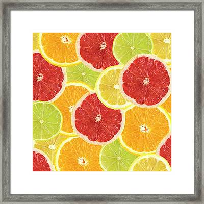 Citrus Fruit Slices Framed Print
