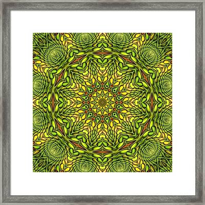 Citrus K12-33 Framed Print by Doug Morgan