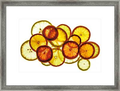 Citrus Ring Framed Print