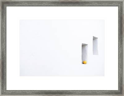 Citrus Simplicity Framed Print