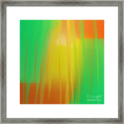 Citrus Slices Abstract 1 Framed Print by Andee Design