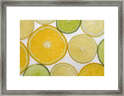 Citrus Slices Framed Print by Kelly Redinger