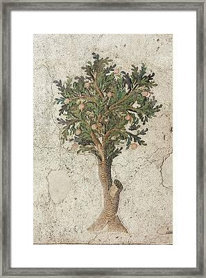 Citrus Tree Mozaic Framed Print