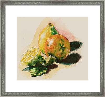 Citrus Under The Sun Light Framed Print by Alessandra Andrisani