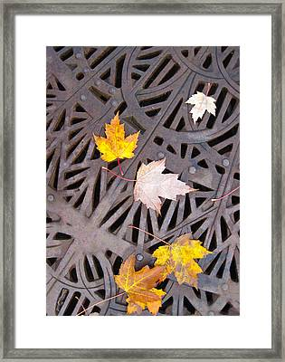 City Meets Nature Framed Print by Cheryl Perin