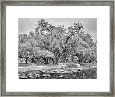 City Park Giants - Paint Bw Framed Print by Steve Harrington