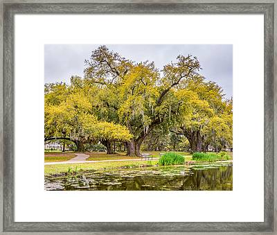 City Park Giants Framed Print by Steve Harrington