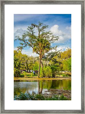 City Park Lagoon 2 Framed Print by Steve Harrington