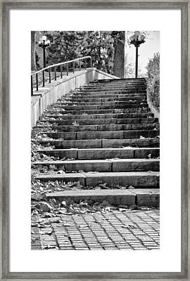 City Steps 1 Framed Print by Angelina Vick