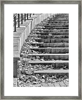 City Steps 2 Framed Print by Angelina Vick