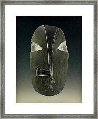 Cladophora #0008 Framed Print by Diana Lee