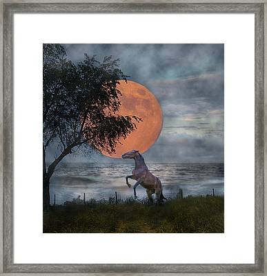 Claiming The Moon Framed Print by Betsy Knapp