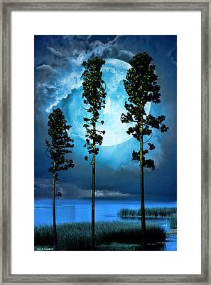 Clair De Lune Framed Print