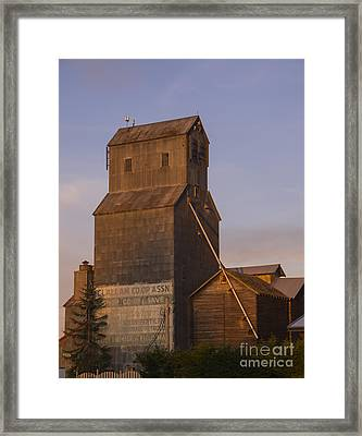 Clallum Co-op Framed Print