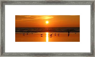 Clam Digging At Sunset - 2 Framed Print