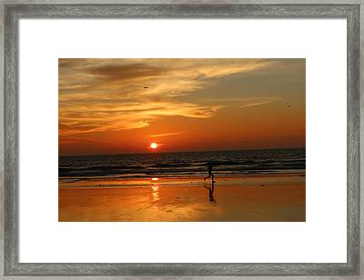 Clam Digging At Sunset - 3 Framed Print