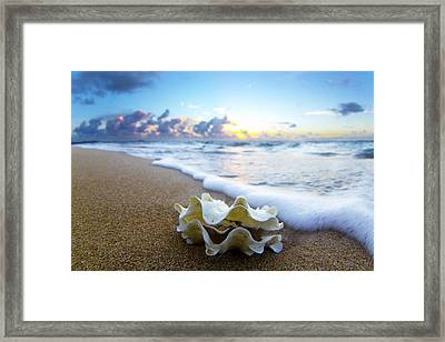 Clam Foam Framed Print