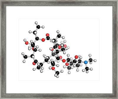 Clarithromycin Antibiotic Molecule Framed Print