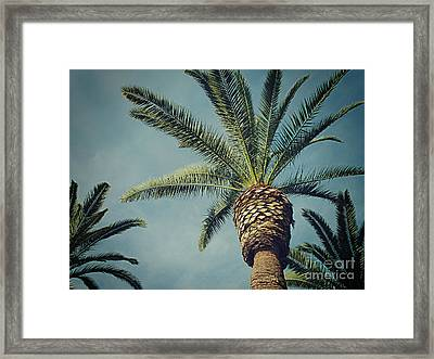 Framed Print featuring the photograph Classic Palms2 by Meghan at FireBonnet Art