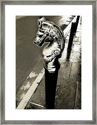 Classic Royal Framed Print