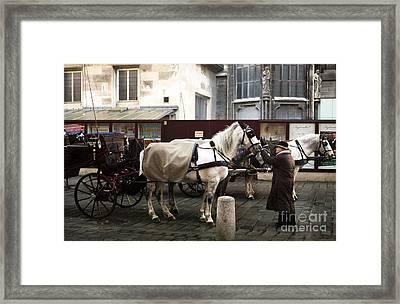 Classic Vienna Framed Print