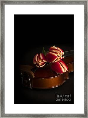 Classical Romance Framed Print by Edward Fielding