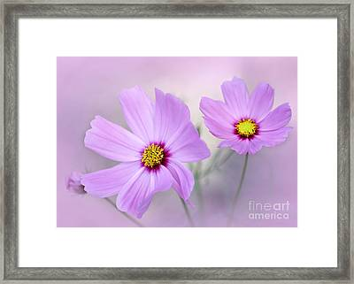 Classy And Cosmopolitan Framed Print by Sabrina L Ryan