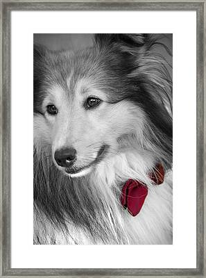 Classy Red Framed Print by Loriental Photography