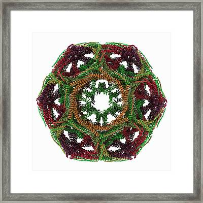 Clathrin Lattice Framed Print by Laguna Design