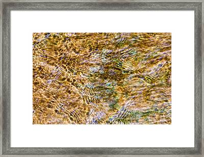 Clean Stream 1 - Featured 2 Framed Print
