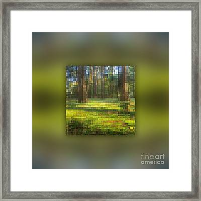 Clean Water Thanks To The Forest Framed Print