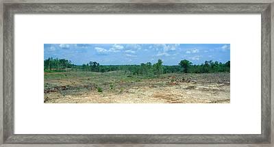 Clear Cutting In The Blue Ridge Framed Print