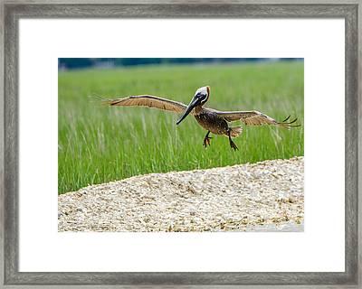 Clear For Landing Framed Print