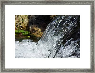 Clear Insight Framed Print
