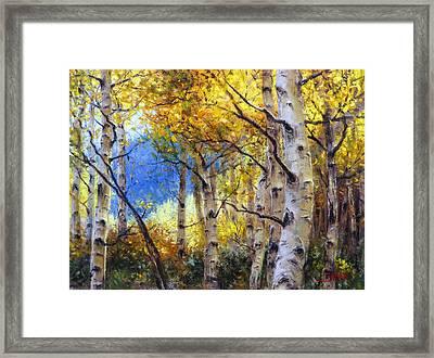 Clear Skies Framed Print by Bill Inman