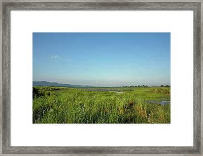 Clear Skies Over A Marsh In Kaziranga Framed Print by Steve Winter