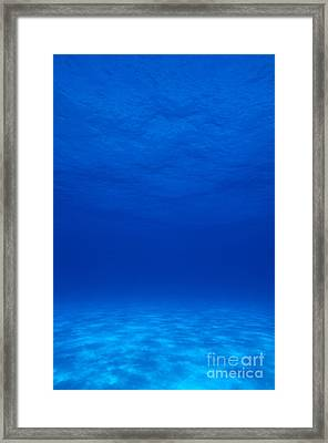 Clear Tropical Water Framed Print by F Stuart Westmorland