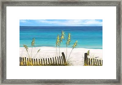 Clear Water Florida Framed Print