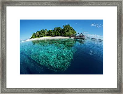 Clear Water Off Sipadan Island Framed Print