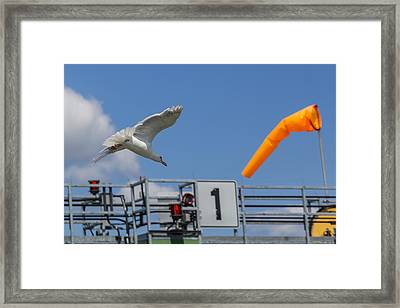 Cleared For Landing Framed Print by Scott Campbell